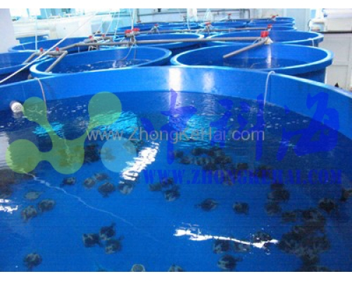 中国科学院海洋研究所-水族楼-鱼类实验室