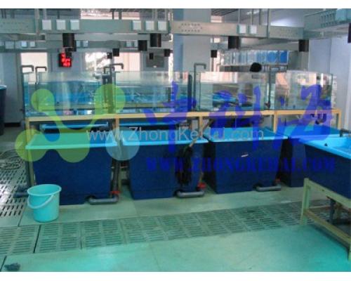 虾类实验室