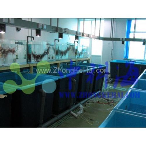 藻类实验室