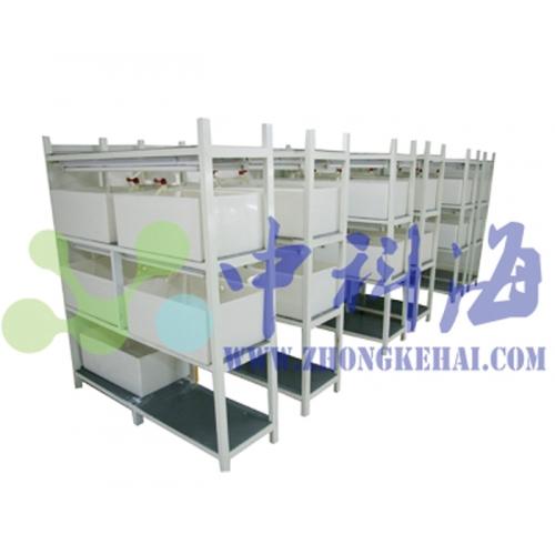 小型PP水槽 养殖盒