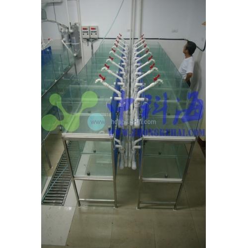中国海洋大学水产学院