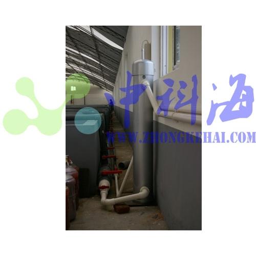 胶南瑞滋海参 黄海水产研究所水族实验室