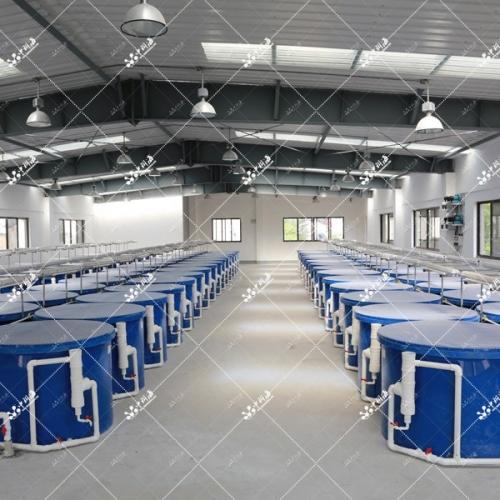 室内工厂化鱼类养殖系统